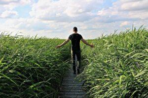 「転職が決まらない…」鬱から立ち直る方法